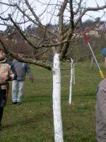 2020-03-14_Schnittkurs_09